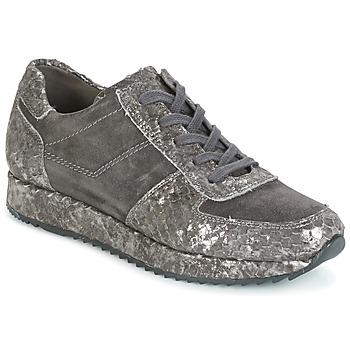 Sko Dame Lave sneakers Perlato TINA Grå