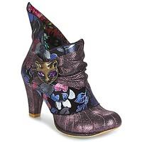 Sko Dame Lave støvletter Irregular Choice MIAOW Violet