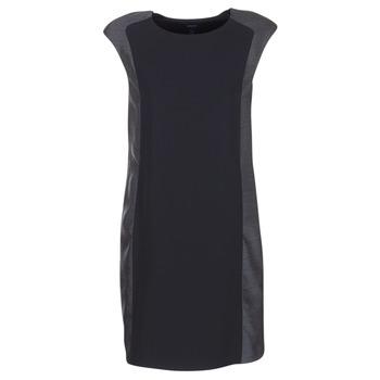textil Dame Korte kjoler Armani jeans LAMIC Sort / Grå