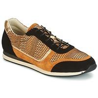 Sko Dame Lave sneakers Bocage LAURETTE Sort / Okker