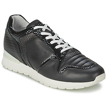 Sneakers Bikkembergs KATE 420 (1913555881)