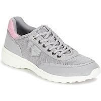 Sko Dame Lave sneakers Aigle LUPSEE W MESH Grå / Pink