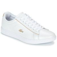 Sko Dame Lave sneakers Lacoste CARNABY EVO 118 6 Hvid