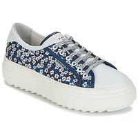 Sko Dame Lave sneakers Serafini SOHO Blå