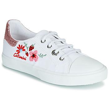 Sko Pige Lave sneakers Catimini SAXIFAGE Hvid