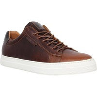 Sko Herre Lave sneakers Schmoove 98555 Brun