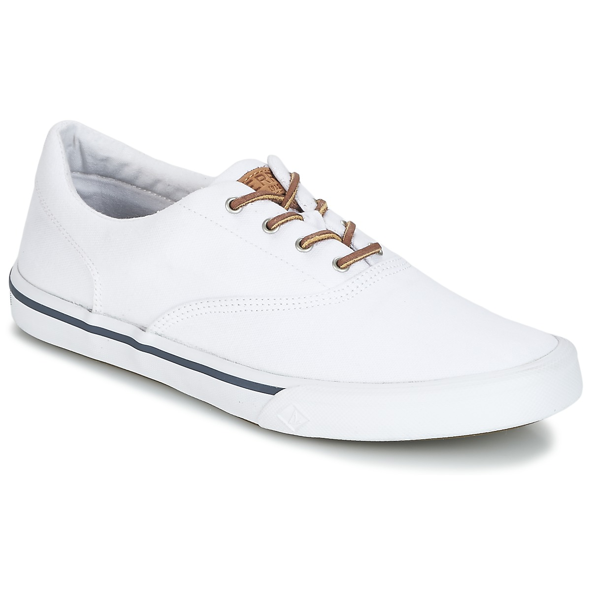 Sneakers Sperry Top-Sider  STRIPER II CVO WASHED