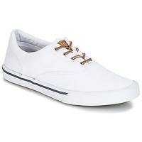 Sko Herre Lave sneakers Sperry Top-Sider STRIPER II CVO WASHED Hvid