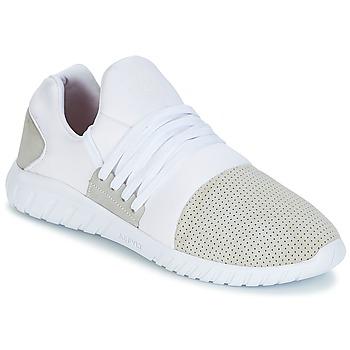 Sko Herre Lave sneakers Asfvlt AREA LUX Hvid / Grå
