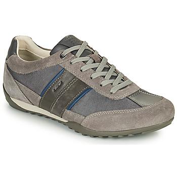 Sko Herre Lave sneakers Geox U WELLS C Grå