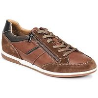 Sko Herre Lave sneakers Geox U RENAN C Brun