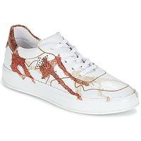 Sko Dame Lave sneakers Felmini CRASKY Hvid / Rød
