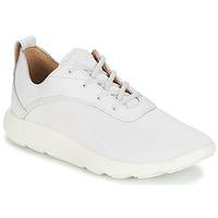 Sko Herre Lave sneakers Timberland FLYROAM Hvid