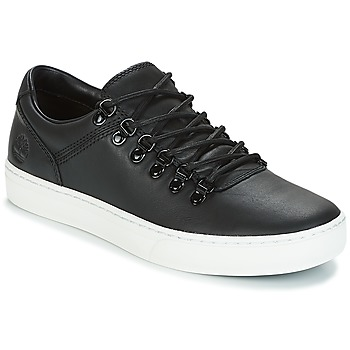 Sko Herre Lave sneakers Timberland ADVENTURE2.0 CUPSOLE Sort