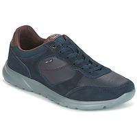 Sko Herre Lave sneakers Geox U DAMIAN Blå
