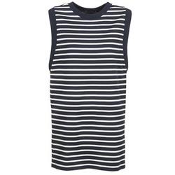 textil Dame Korte kjoler Petit Bateau MARBRE Marineblå / Beige