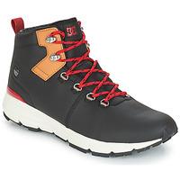 Sko Herre Lave sneakers DC Shoes MUIRLAND LX M BOOT XKCK Sort / Rød
