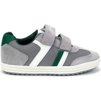 Sko Børn Lave sneakers Geox JR Vita Boy Grå
