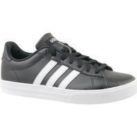 Sko Herre Lave sneakers adidas Originals Daily 2.0 DB0161
