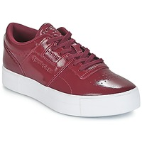 Sko Dame Lave sneakers Reebok Classic WORKOUT LO FVS Bordeaux