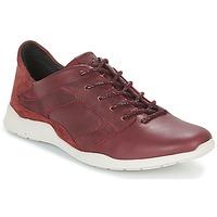 Sko Dame Lave sneakers TBS JARDINS Brun