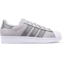Sko Børn Lave sneakers adidas Originals Superstar J Grå,Sølv