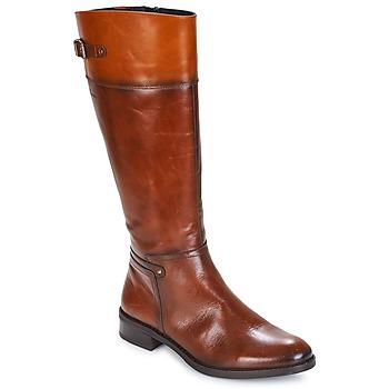 Sko Dame Chikke støvler Dorking TIERRA Brun