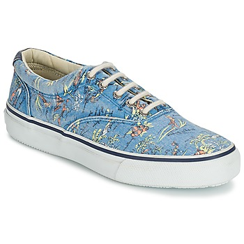 Sko Herre Lave sneakers Sperry Top-Sider STRIPER HAWAIIAN Blå