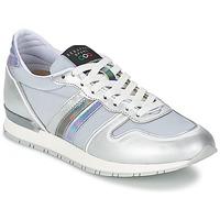 Sko Dame Lave sneakers Serafini LOS ANGELES Sølv / Grå
