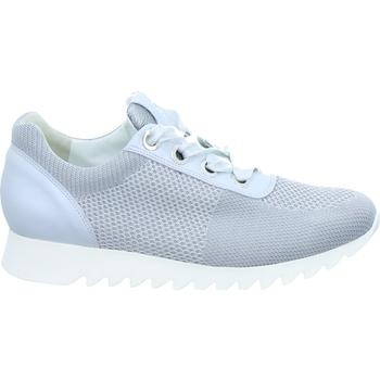 Sko Dame Lave sneakers Paul Green 4627 Hvid,Grå
