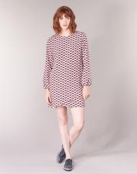 textil Dame Korte kjoler Pepe jeans TRUDY Blå / Hvid / Rød