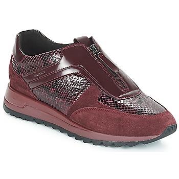 Sko Dame Lave sneakers Geox D TABELYA Bordeaux