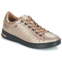 Sko Dame Lave sneakers Geox D JAYSEN Beige