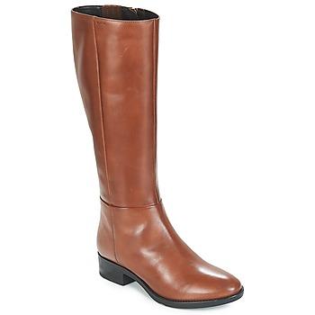 Sko Dame Chikke støvler Geox D FELICITY Brun