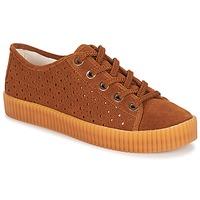 Sko Dame Lave sneakers André STARLIGHT Brun