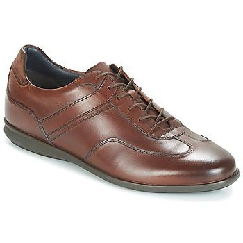 Sko Herre Lave sneakers André CAMERINO Brun