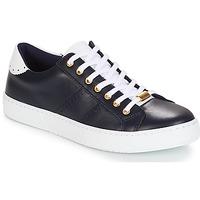 Sko Dame Lave sneakers André BERKELEY Marineblå