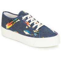 Sko Dame Lave sneakers André KITE Jeans