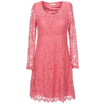 textil Dame Korte kjoler Cream ANNEMON LACE Pink