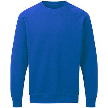 textil Herre Sweatshirts Sg Raglan Royal