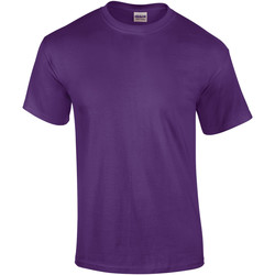 textil Herre T-shirts m. korte ærmer Gildan Ultra Purple