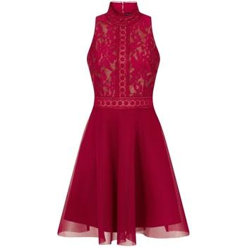 textil Dame Korte kjoler Little Mistress  Berry