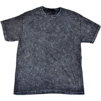 textil Herre T-shirts m. korte ærmer Colortone Mineral Black