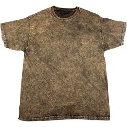 textil Herre T-shirts m. korte ærmer Colortone Mineral Brown