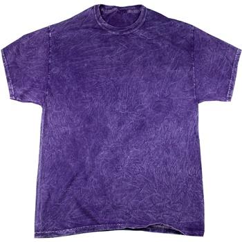 textil Herre T-shirts m. korte ærmer Colortone Mineral Purple