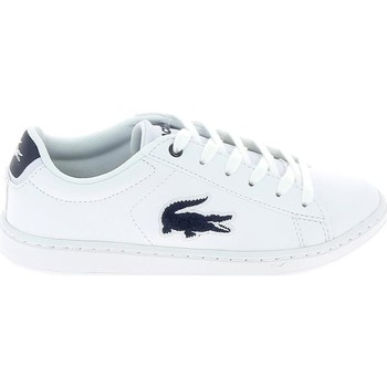 Sko Børn Lave sneakers Lacoste Carnaby Evo C Blanc Bleu Hvid