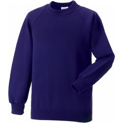 textil Børn Sweatshirts Jerzees Schoolgear 7620B Purple